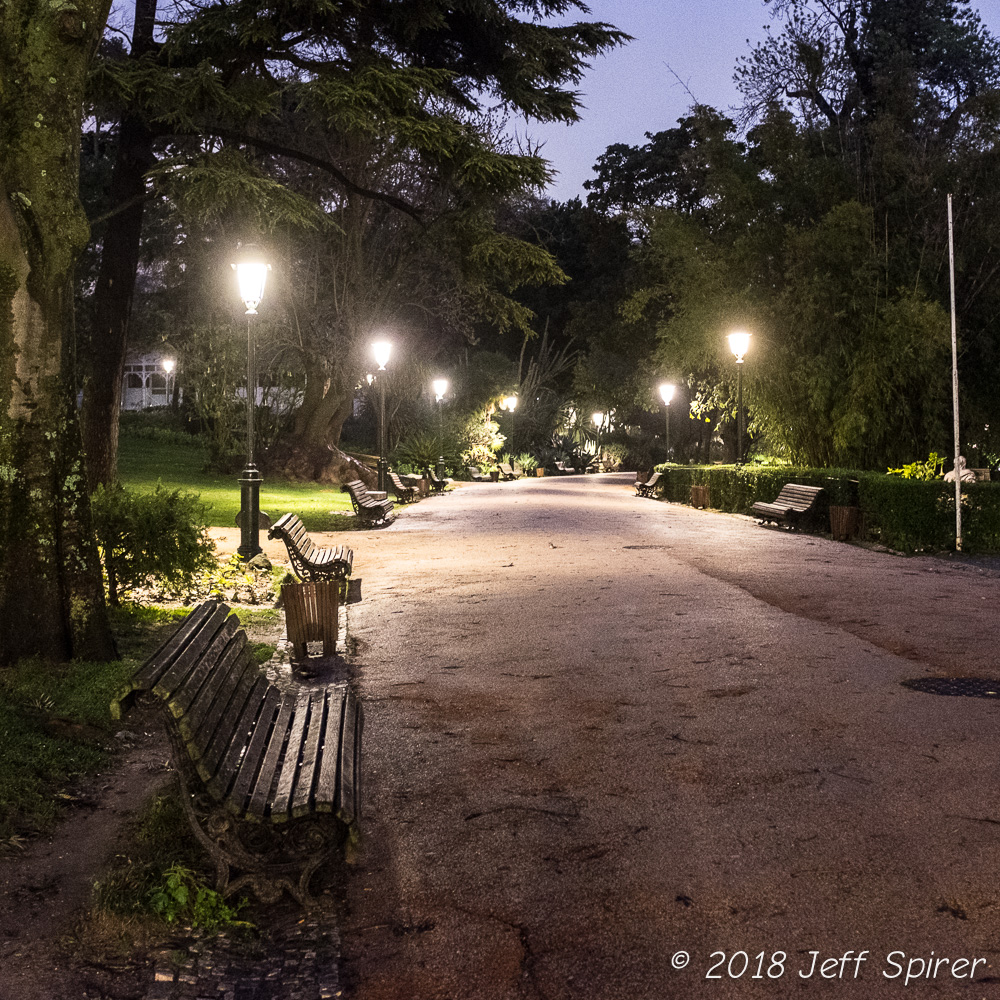 Lisbon Park at Night